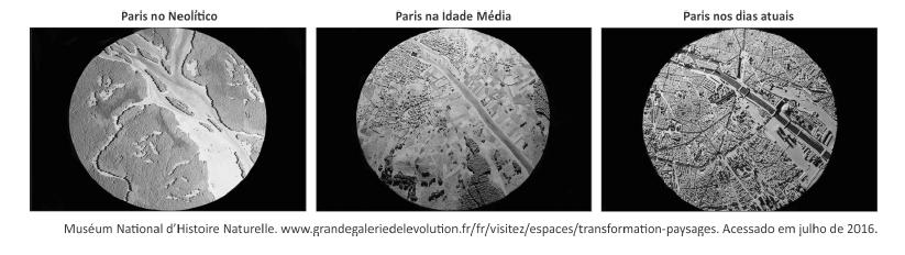 Questão 35_Fuvest 2017_paris e rio seno.png