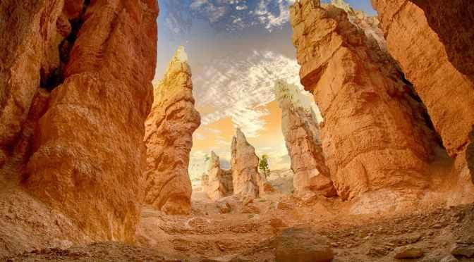 Diferença entre deserto e desertificação