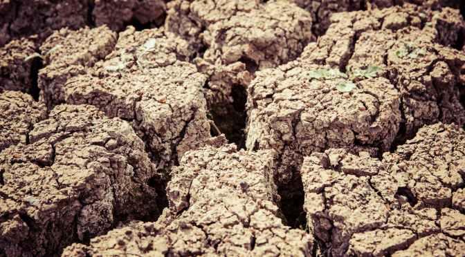 Desertificação e arenização: semelhanças e diferenças
